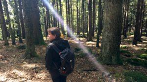 Comment réaliser un bilan de compétences en pleine nature grâce à l'Outdoor Business Coaching avec D'un Pas Décidez