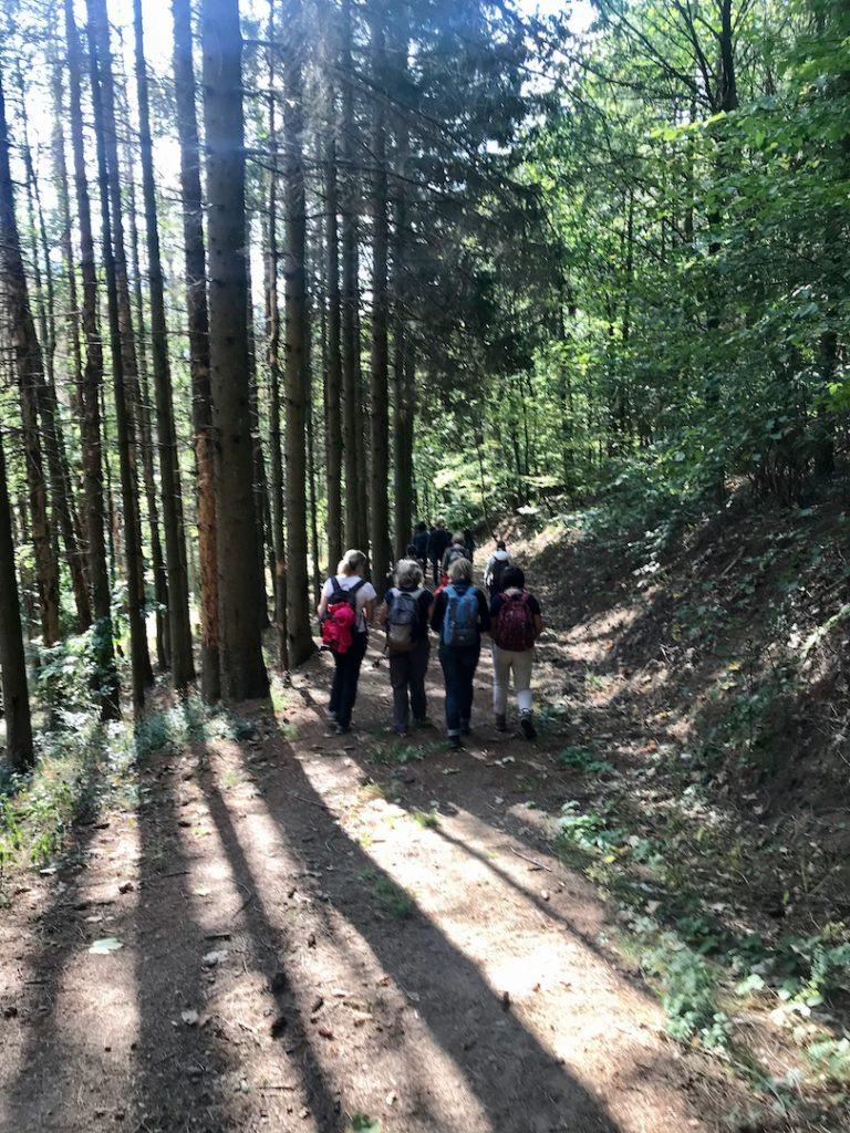 Les Responsables Ressources Humaines RH de l'entreprise HAGER en Alsace bénéficient d'un accompagnement outdoor business coaching avec D'un pas Décidez